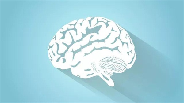 测一测大脑疲劳了吗?醒活大脑只需一茶一招两动作